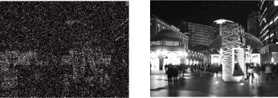 赤外+電子感度アップ+3次元DNR回路の融合による暗視カメラ